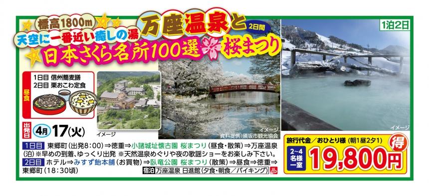 天空に一番近い癒しの湯 万座温泉と日本さくら名所100選 桜まつり