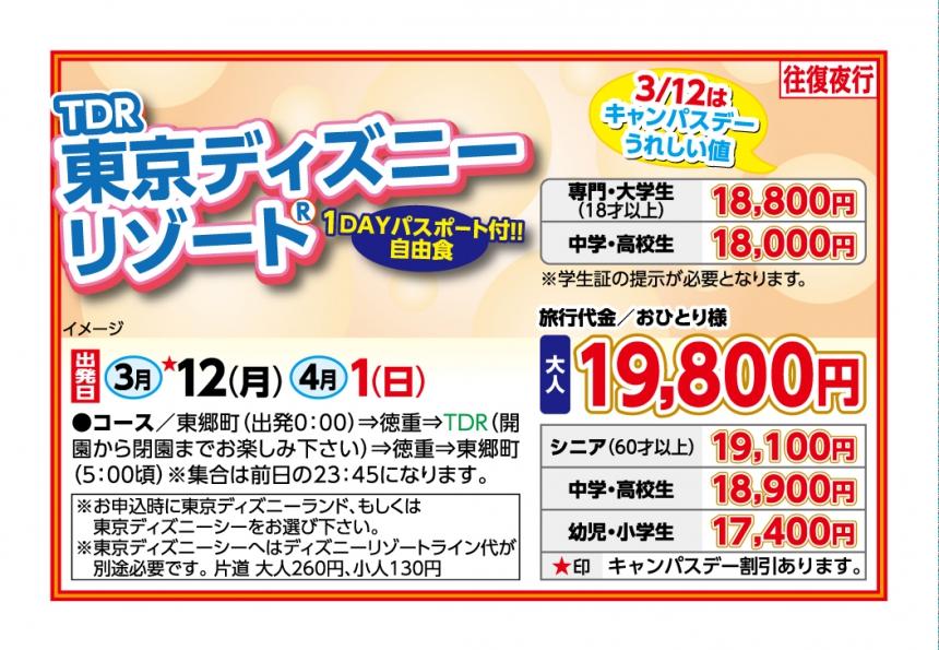 TDR 東京ディズニーリゾート☆往復夜行☆