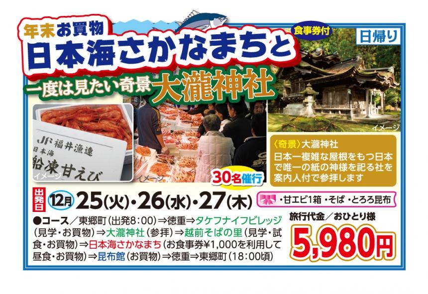 年末お買物 日本海さかなまちと奇景大瀧神社