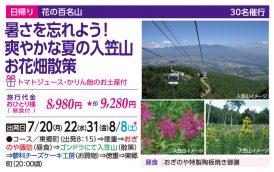 暑さを忘れよう!爽やかな夏の入笠山お花畑散策