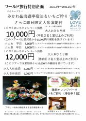 LOVEあいちキャンペーン 三河♨ 三河海遊亭宿泊&いちご狩り