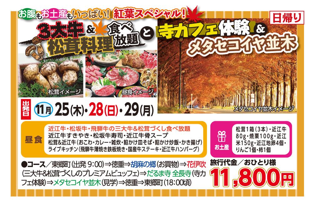 3大牛松茸料理食べ放題と寺カフェ体験&メタセコイヤ並木